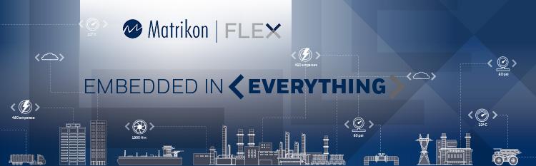 FLEX_SDK